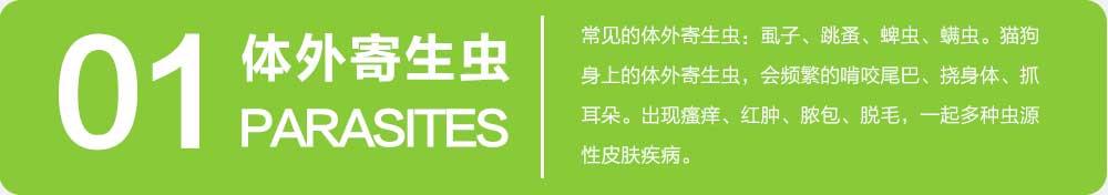 杨凌职业技术学院_14.jpg