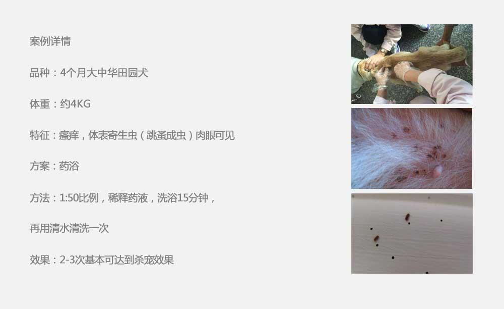 杨凌职业技术学院_15.jpg