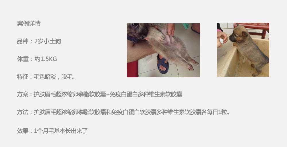 杨凌职业技术学院_21.jpg